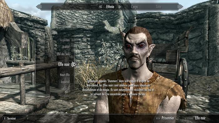 Skyrim Elf Noir